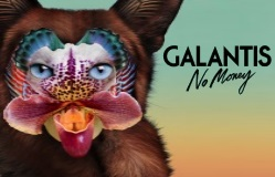 Galantis + money
